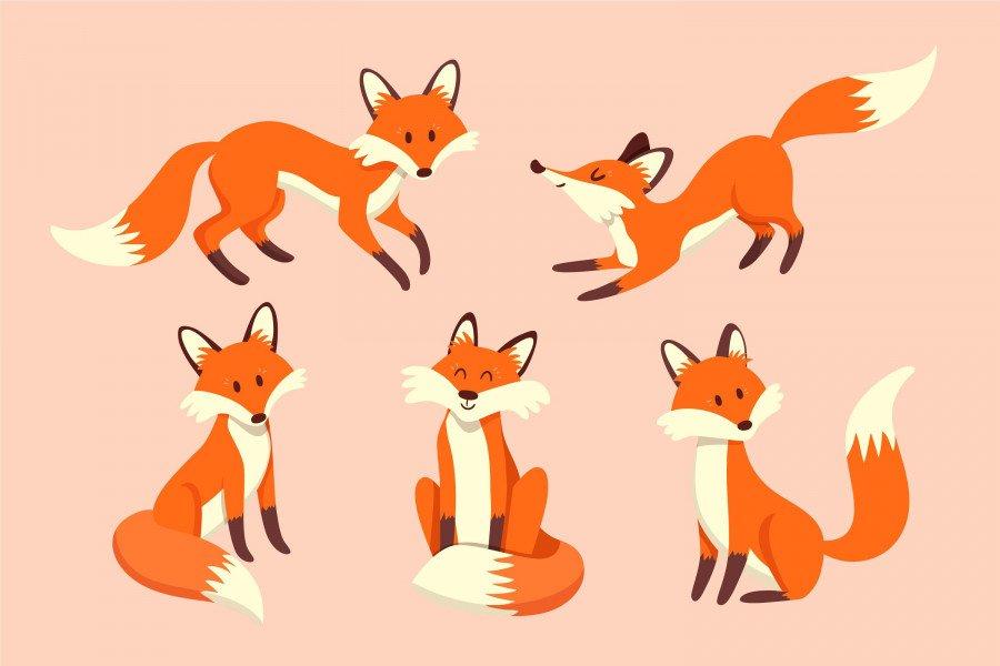 وکتور روباه